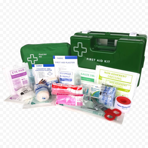 Two Green First Aid Hand Bags & Medicine Supplies