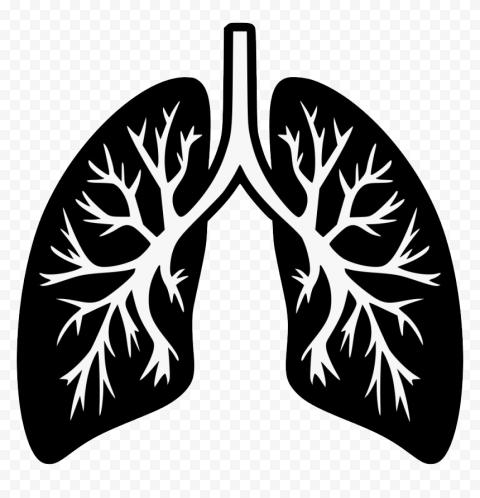 Black Humain Lung Trachea Respiratory Icon Vector