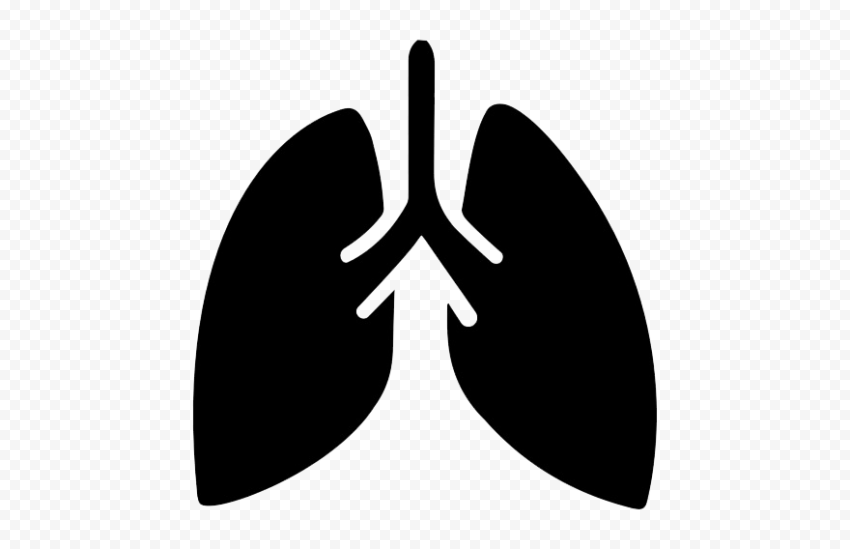 Black Lungs Respiratory System Breathing Icon