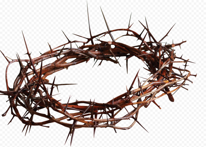 Crown Of Thorns Cross Spines Prickles Christianity