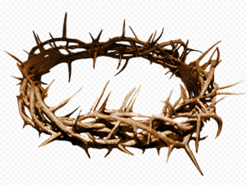 Crown Of Thorns Christian Spines Christianity
