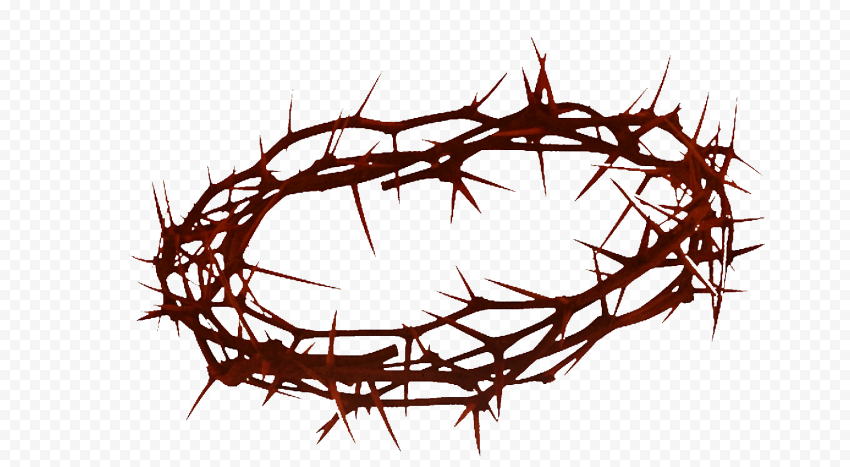 Good Friday Crown Of Thorns Christian Spines