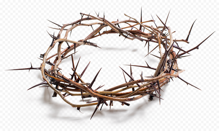 Crown Of Thorns Christian Spines Good Friday