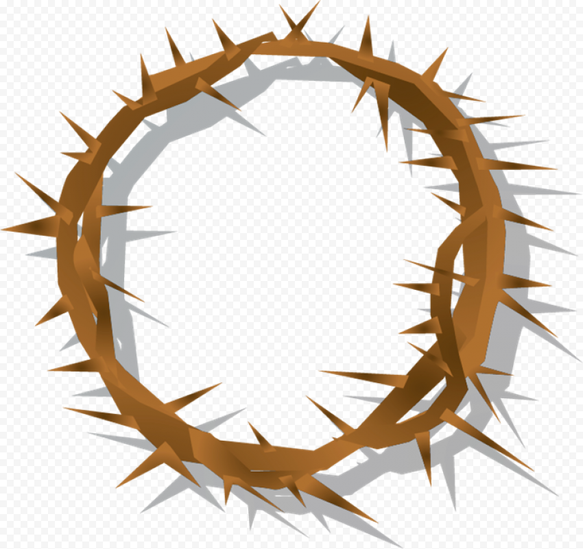 Brown Spines Crown Of Thorn Illustration Clipart