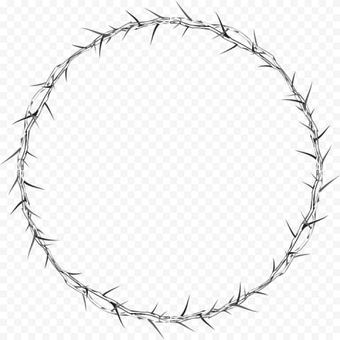 Crown Of Thorns Circle Frame Metal Spines
