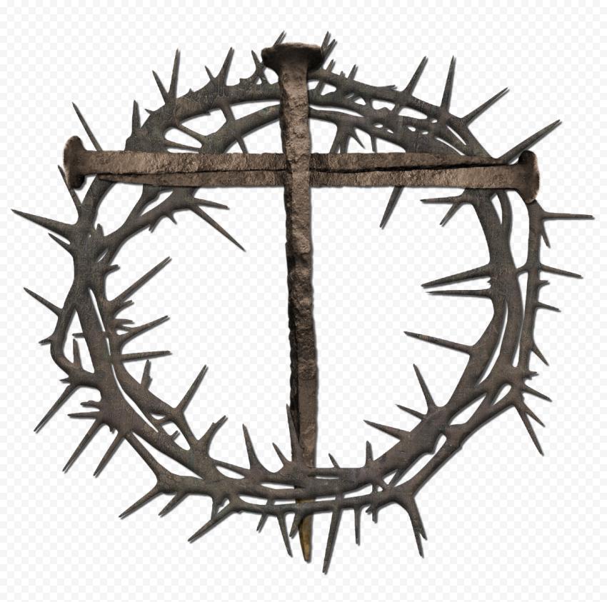 Crown Of Thorns Metal Nail Cross Symbolism Branch