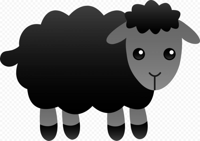 Cute Black Sheep Cartoon Illustration