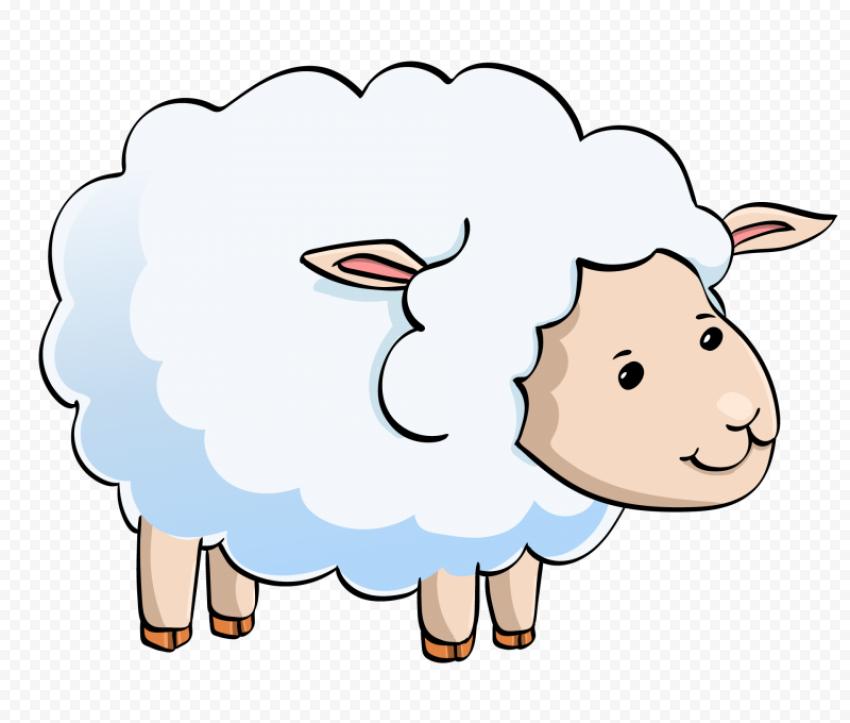 Cute White Lamb Sheep Cartoon Illustration