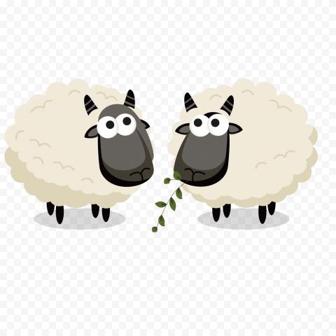 Two Cute Sheep Eat Grass Clipart