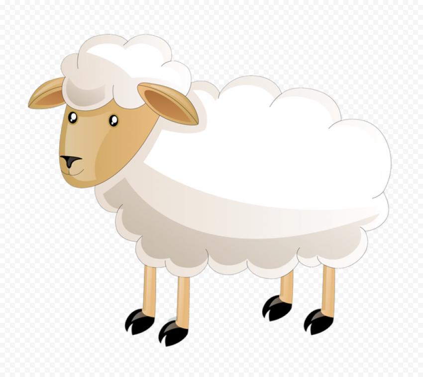 Lamb Sheep Cartoon Illustration