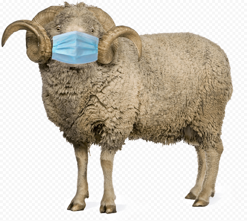 Surgical Mask Sheep With Horns Standing Up