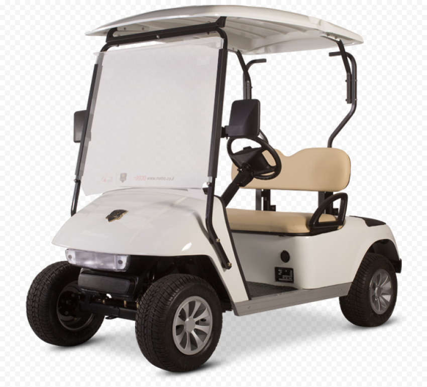 Golf Buggies Cart Vehicle Two Places