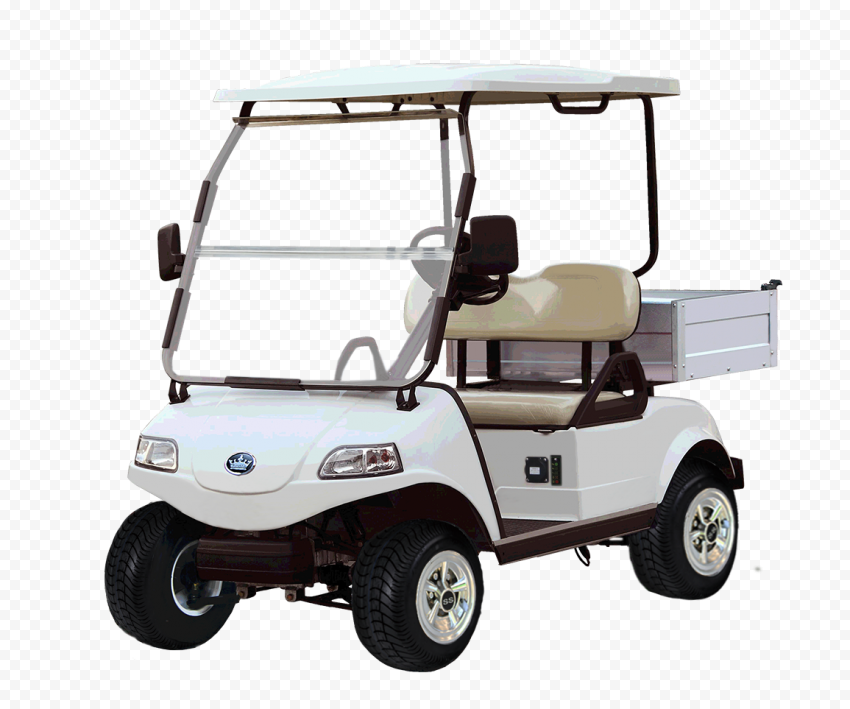 Electric Golf Cart Buggy Vehicle Two Seater