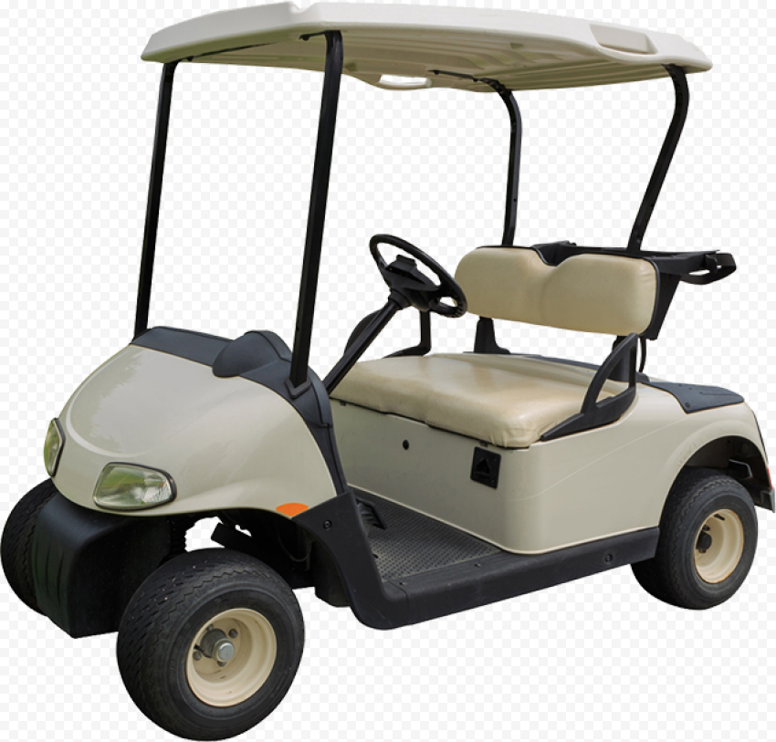 Golf Buggies Cart Car Vehicle Two Seater