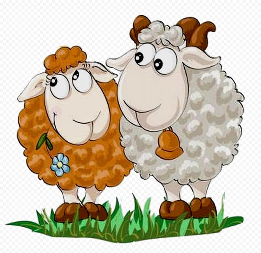 Two Cartoon Sheep Sticker Mammals Animals