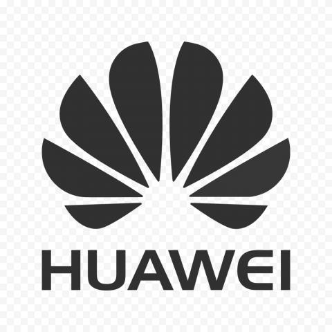 Horizontal Huawei Logo Gray Version