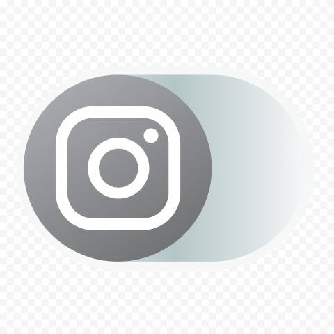 Gray Instagram Offline OFF Disabled Web Icon