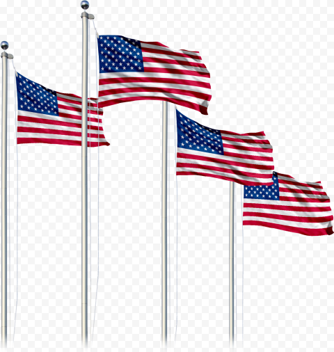 Group Of American Flags On Poles