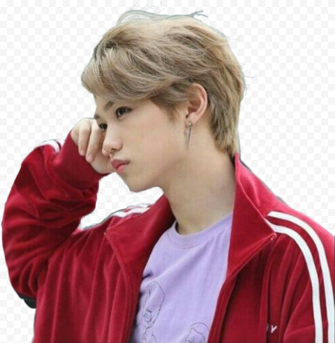 Felix Lee Stray Kids Celebrity