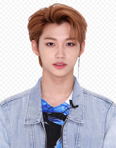 HD Lee Felix Stray Kids