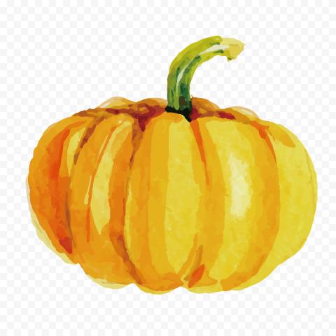 Watercolor Orange Pumpkin High Resolution