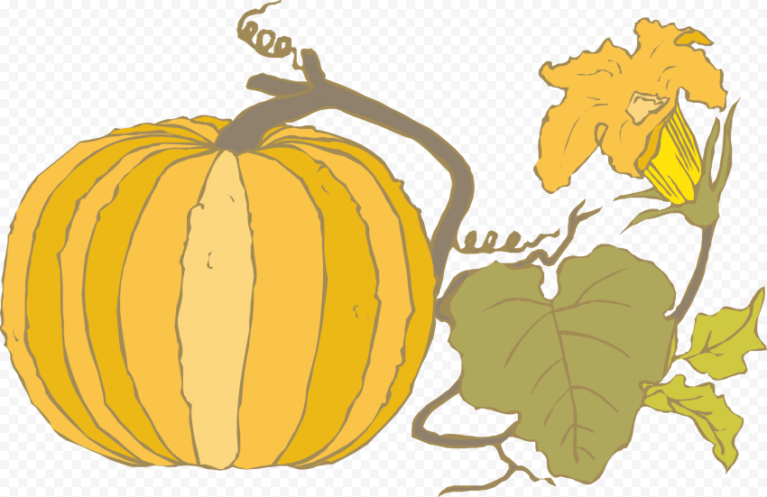 Vector Pumpkin With Leaves Autumn Wall