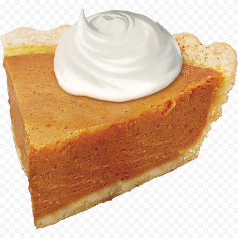 HD One Piece Of Pumpkin Pie Tart Real Image