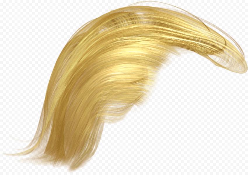 Donald Trump Realistic Yellow Hair