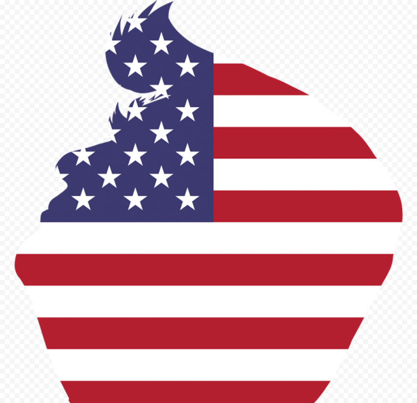 US Flag Donald Trump Silhouette Side View