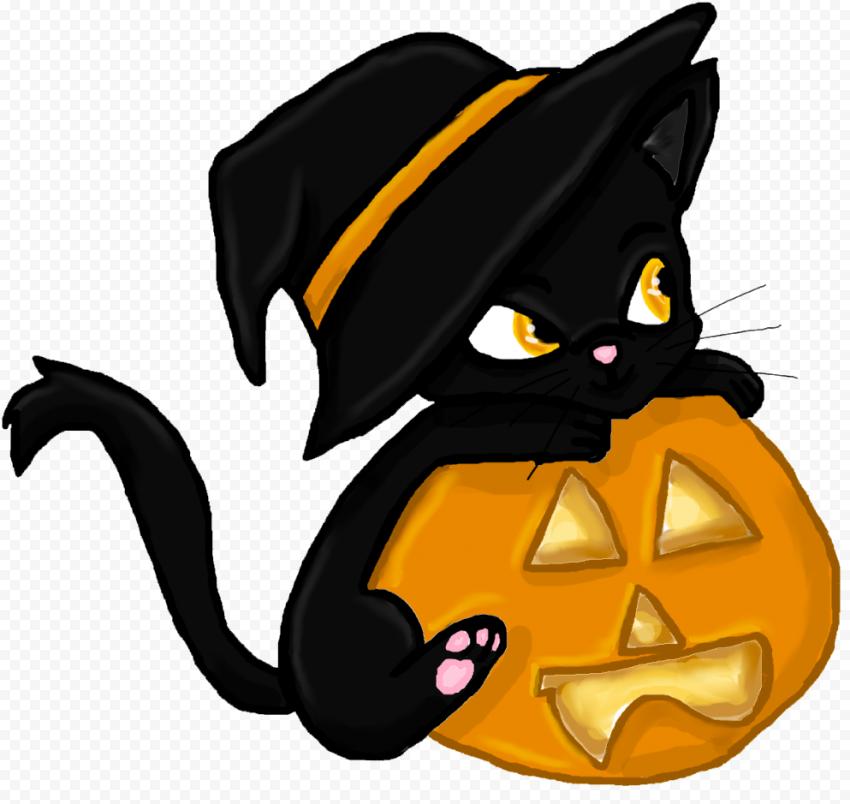 Cute Halloween Black Cat Wear Witch Hat With Pumpkin
