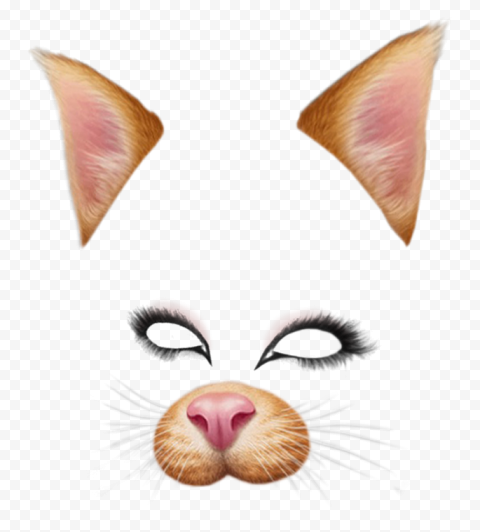 Snapchat Cat Face Filter Ears Eyes Nose PNG Image