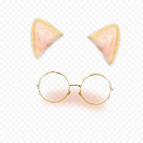 Snapchat Cat Cute Face With Glasses Filter Ears PNG Image