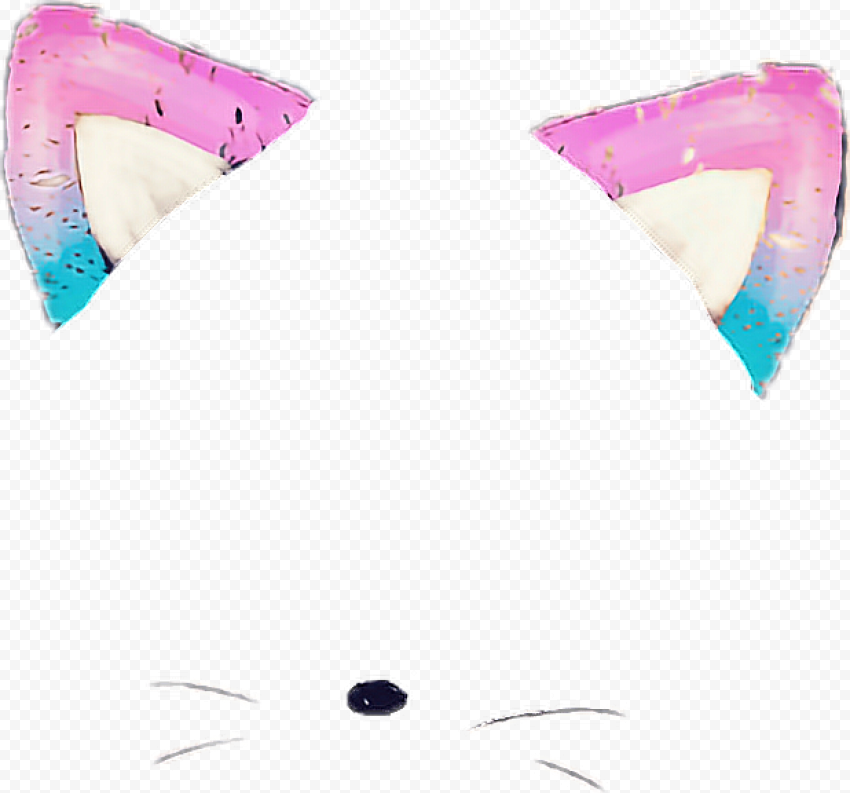 Snapchat Kitten Cat Face Cute Filter Ears & Nose PNG Image