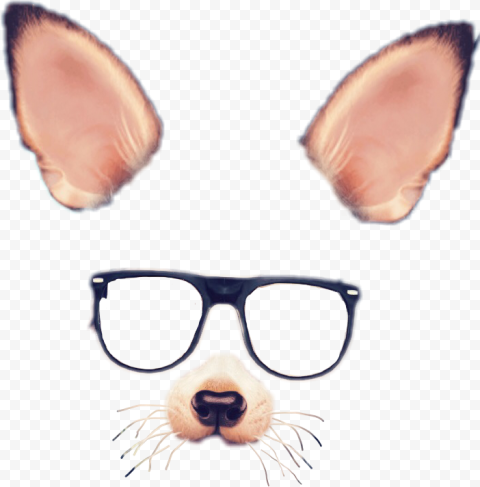 Snapchat Dog Puppy Filter Glasses Ears & Nose PNG Image