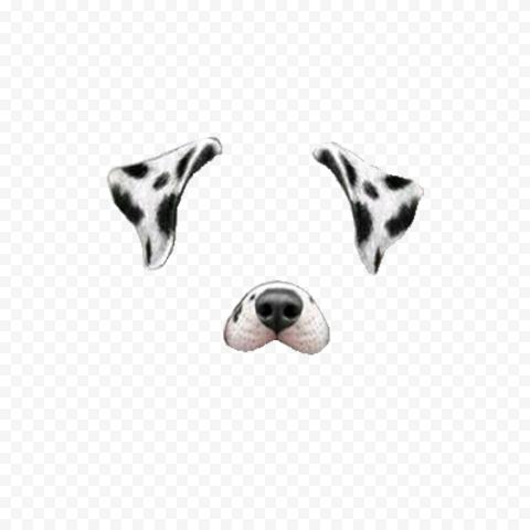 HD Snapchat Cute Dalmatian Dog Puppy Filter PNG Image