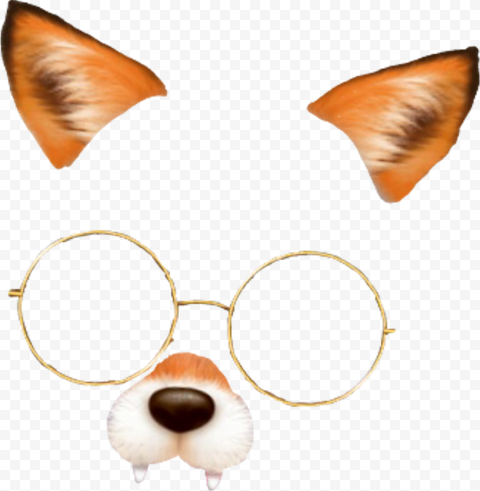 Snapchat Cute Dog Puppy Filter With Glasses PNG Image