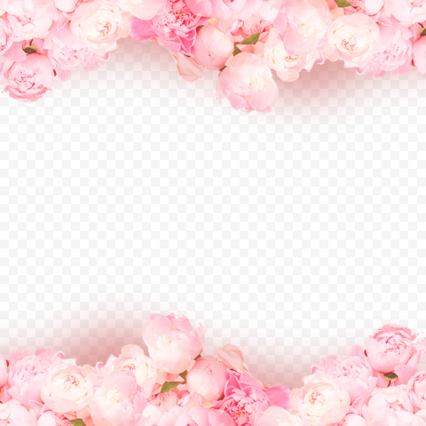 HD Pink Flowers Background Valentines Day Love Romantic PNG