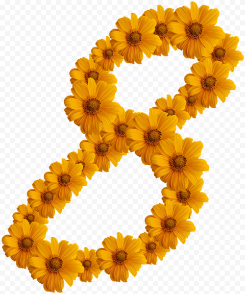 8 Eight Number Yellow Flowers Border Frame