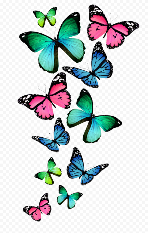 Butterflies Flying Wallpaper Clipart