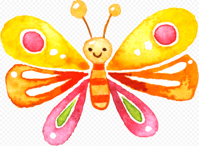 Butterfly Watercolor Painting PNG
