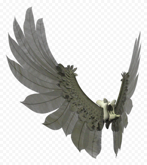 HD Mechanical Wings Transparent PNG