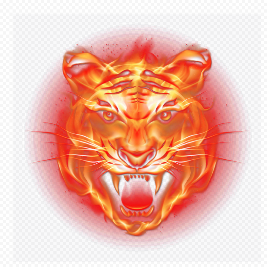 HD Tiger Fire Flame Face PNG