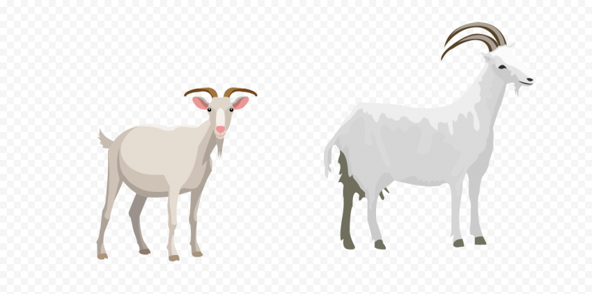 HD Two Cartoon White Goats Transparent PNG