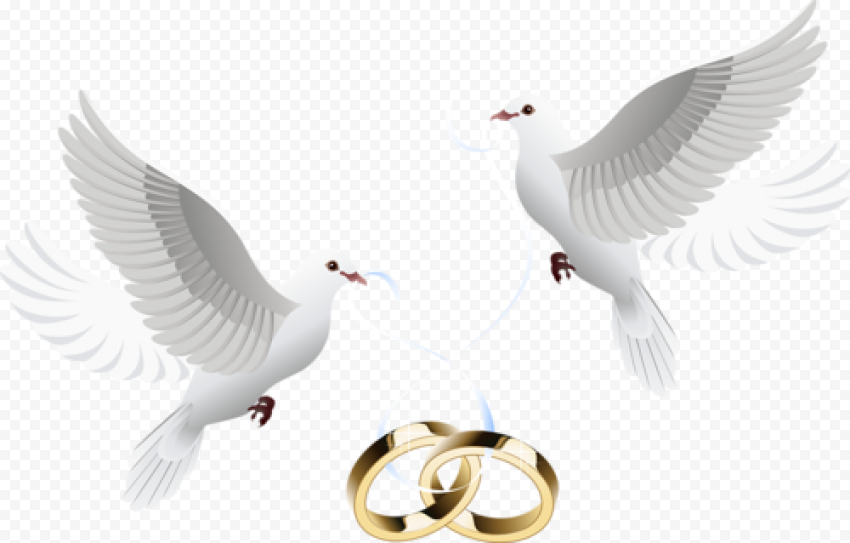 Love Wedding Heart Pigeon Gold Rings