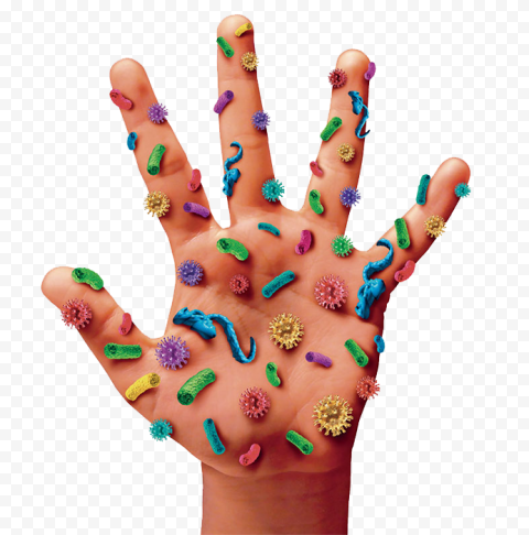 Prevention Infection Hand Germs Bacteria