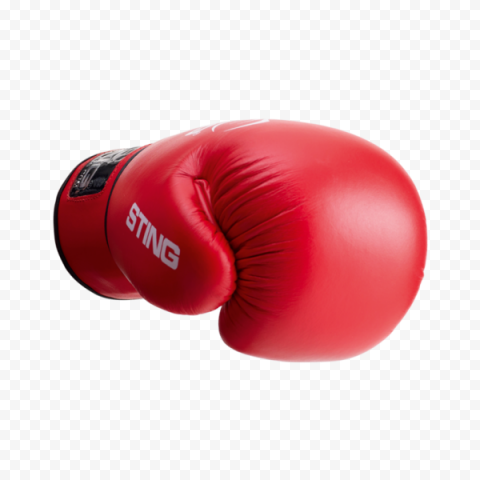 Red String Glove Box Fight Kickboxing