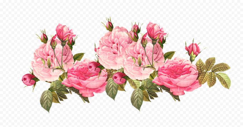 Romantic Pink Flower Canvas Effect Border