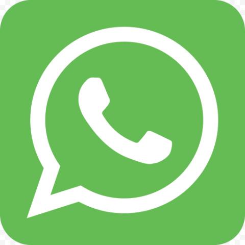 Square Light Green Wathsapp Icon Logo
