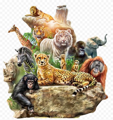 Wild Animals Zoo Badge Transparent Background