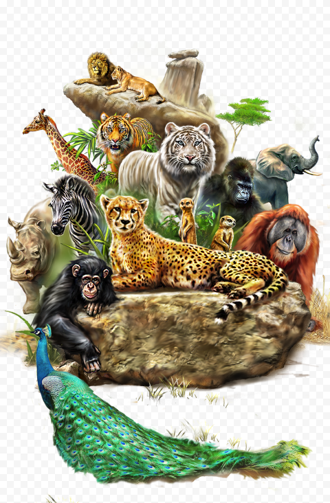 Wild Jungle Animals Oil Painting effect